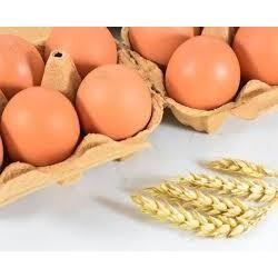 Huevos talla s